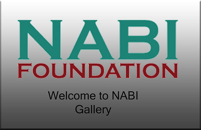 2011 NABI Check-In & Career Fair