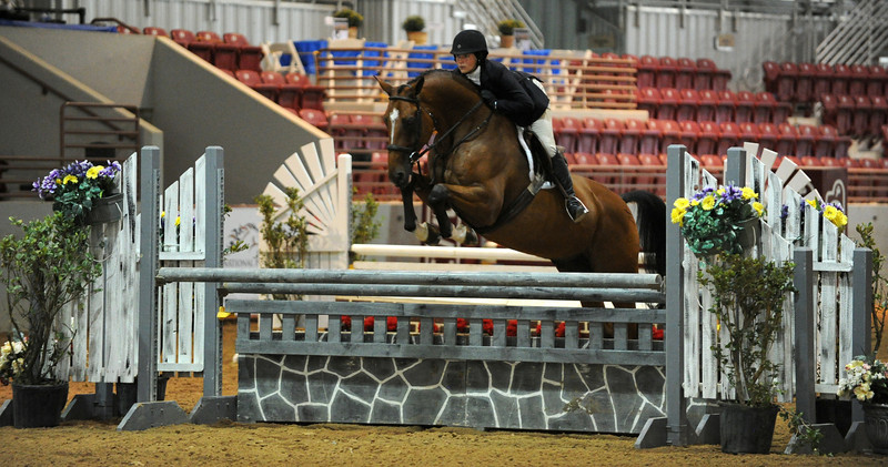 Horse show (55).jpg