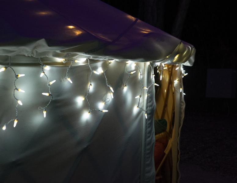 hudsongardenxmaslights-0944.jpg