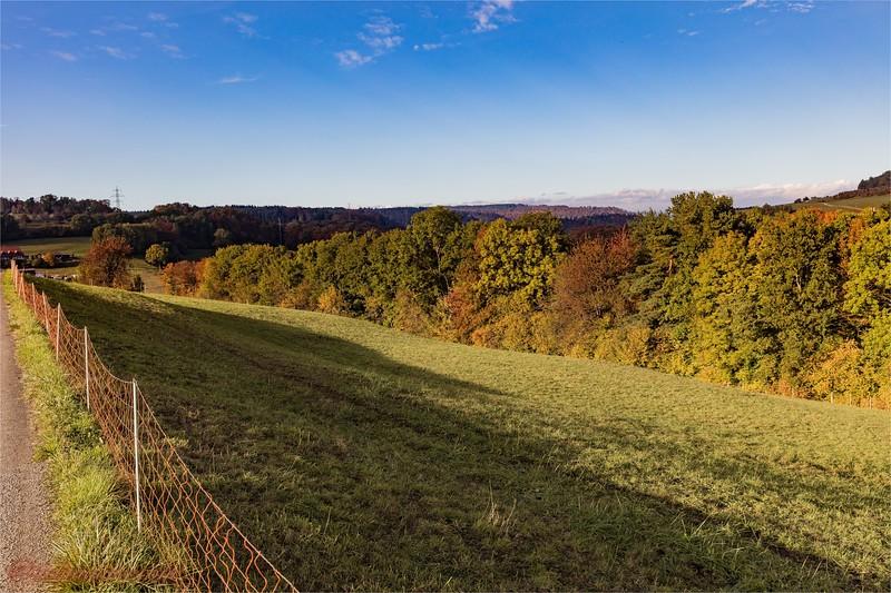 2016-10-22 Herbststimmung Aargau 0U5A1349.jpg