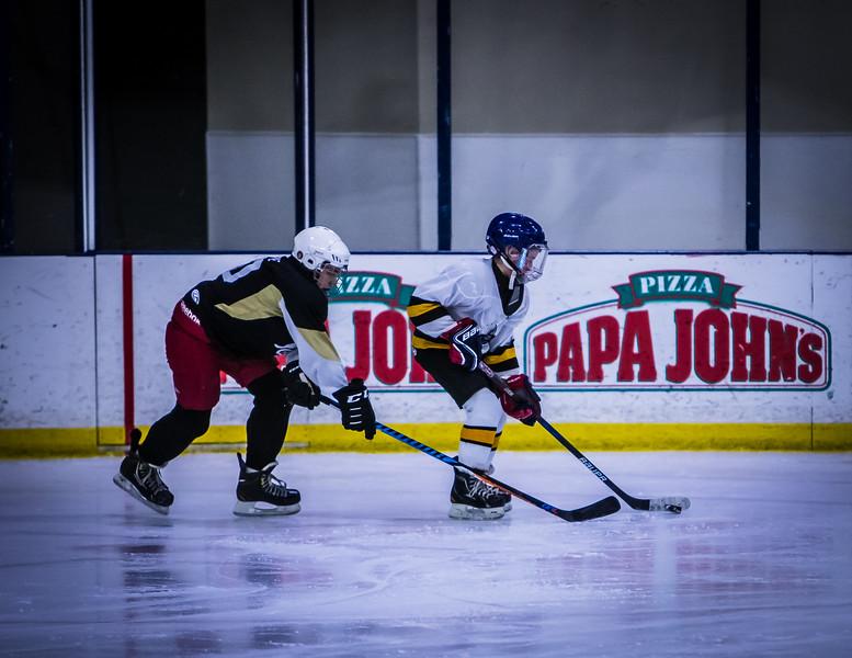 Bruins-28.jpg