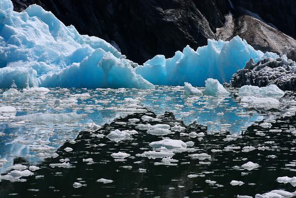 SE Alaska Icebergs