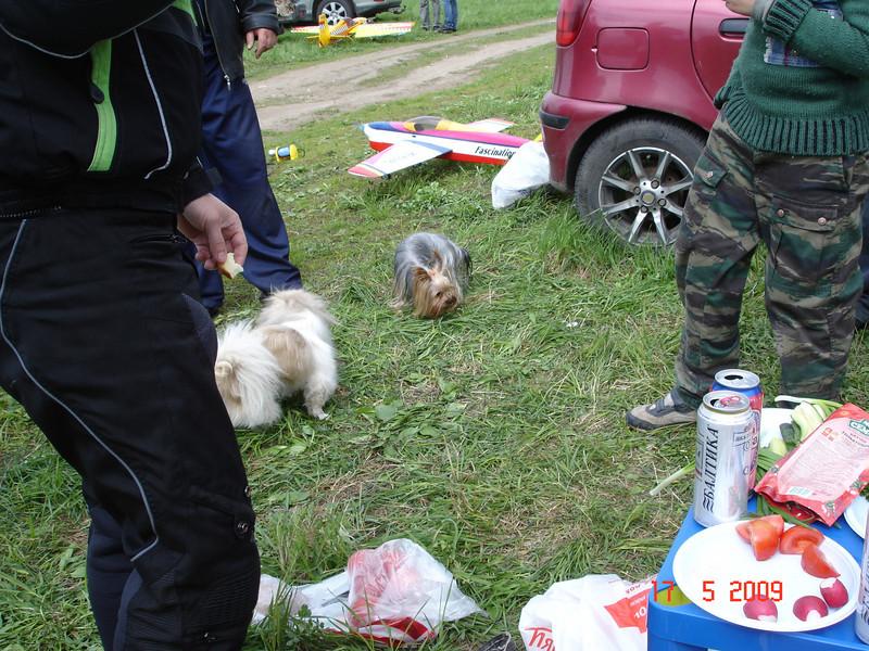 2009-05-17 ВПП Старая Купавна 13.JPG