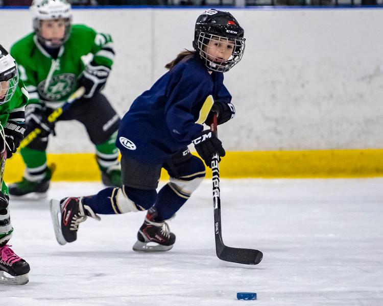 2019-02-04-Ryan-Naughton-Hockey-105.jpg