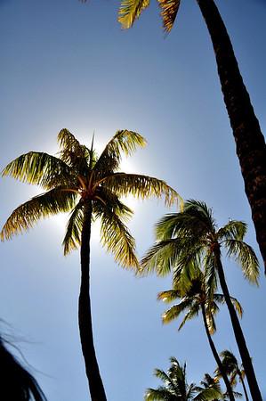 Hawaii Aug 31