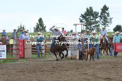 06-21-14 PM Perf Calf Roping