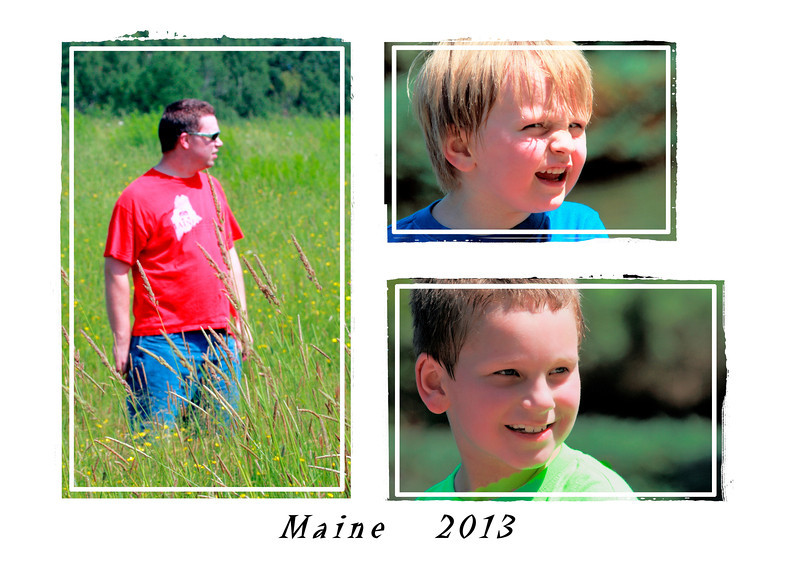 The boys 2013-07-08  My son and his two sons - taken on a very sunny day in Cascade Park, Bangor, Maine.  My son is actually standing on a mown path through the meadow, trying to decide if it will lead us back to the car.