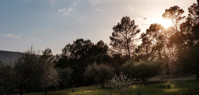 SZ_Martine_DSCF0101-Panorama.jpg