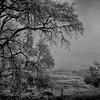 Mendocino County CA 20154