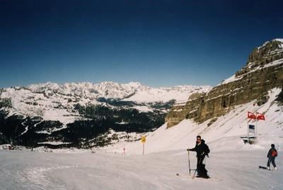 100.Ski.jpg