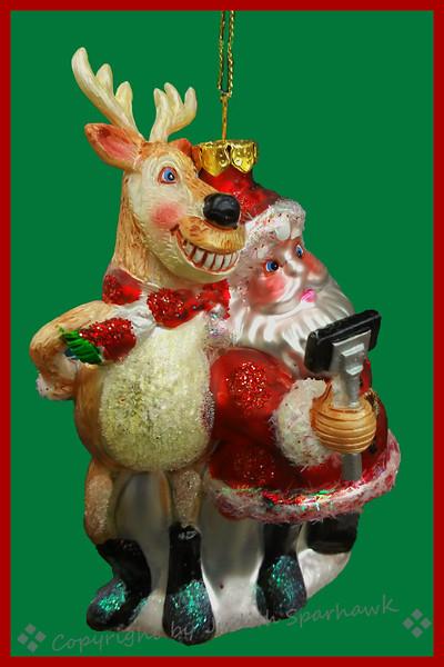 Selfie with Santa