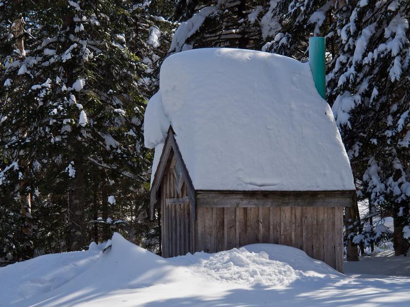 Bécosse enneigée - Refuge la Petite Ourse, Mont Mégantic