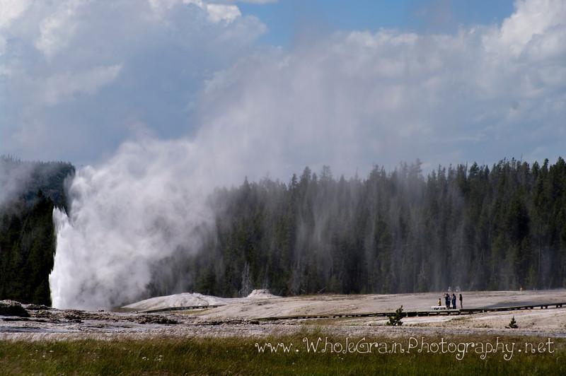 20100712_Yellowstone_3073.jpg