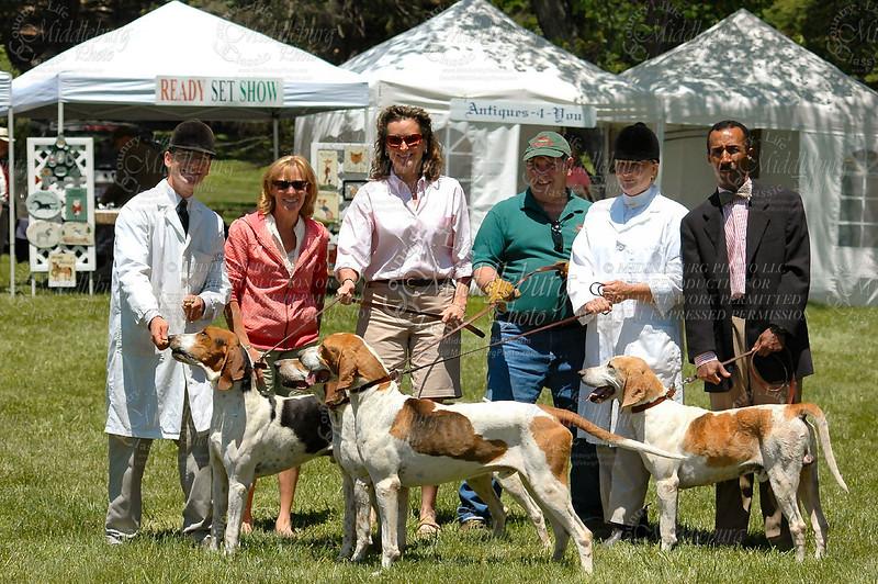 Foxhound Show-2008