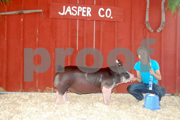 Pig Show - County