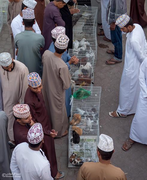 P1088498-Nizwa- Oman.jpg