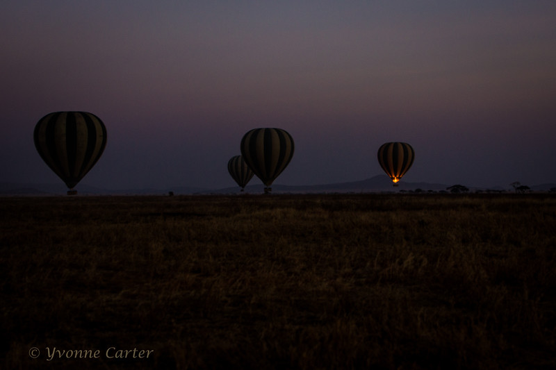 Hot Air Balloon Africa.jpg