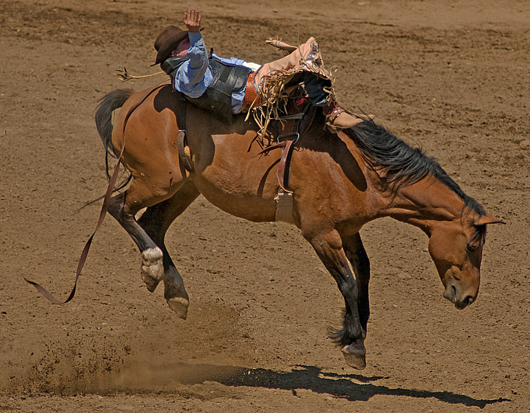 COOMBS RODEO-2009-3516A.jpg