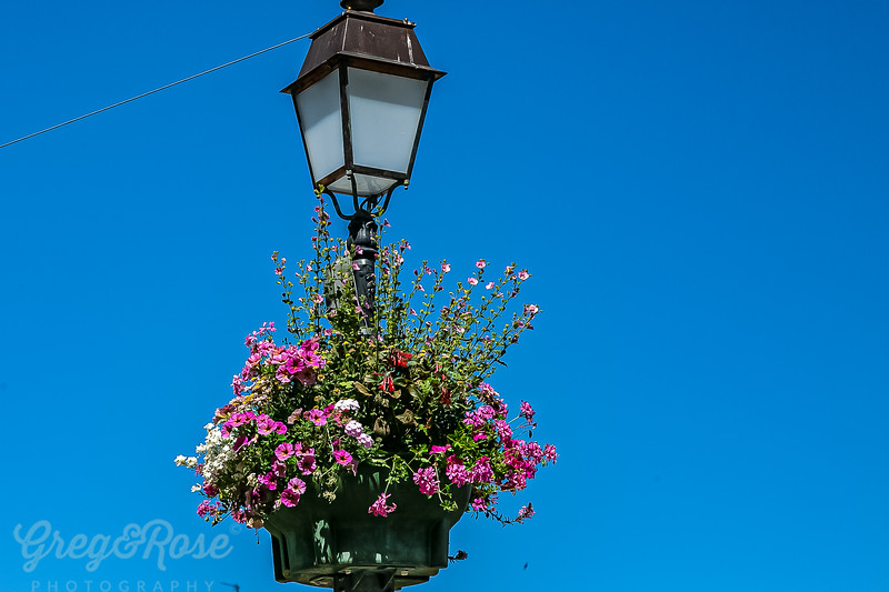 Lamps and Flowers in Honfleur