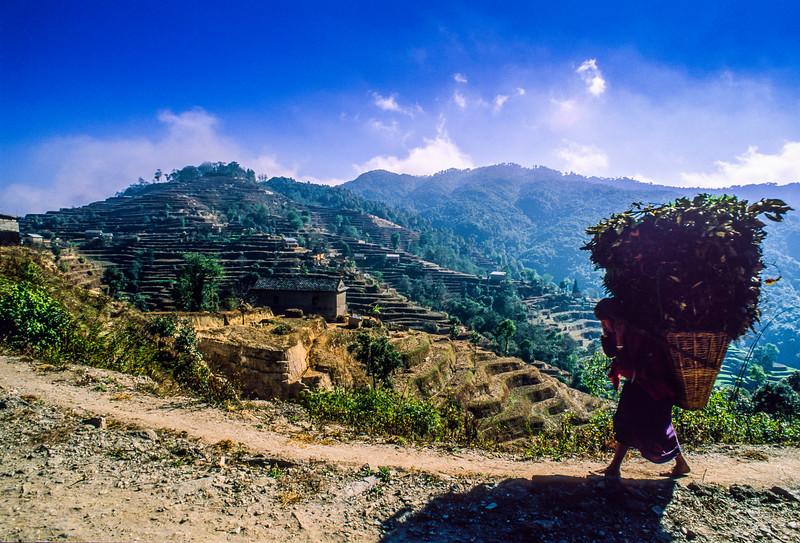 20121207-20121207-nepal_01.jpg
