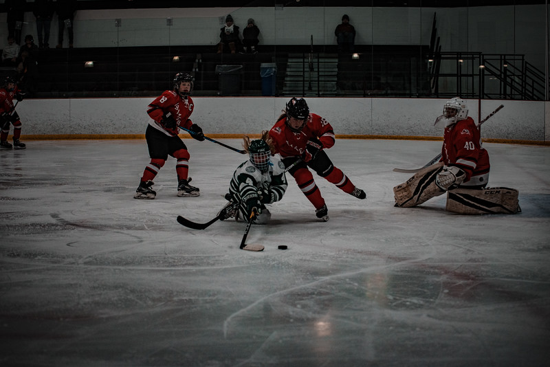 Holy Family Girls Varsity Hockey vs. Mound Westonka, 12/10/19: Cecily Cronin '20 (4)