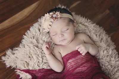 Elena Newborns