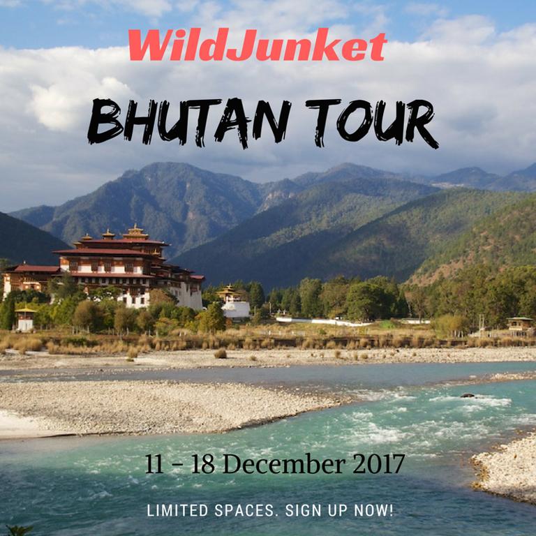 travel bhutan wildjunket