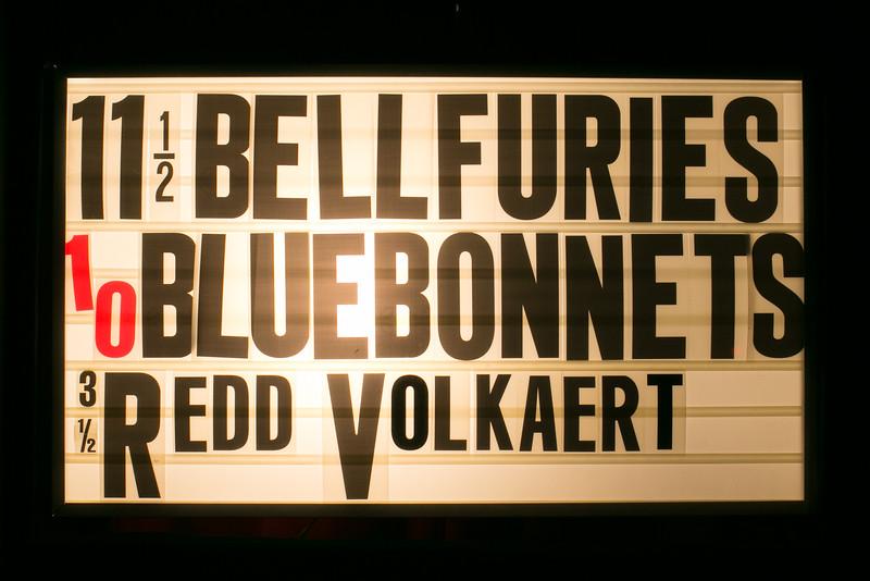 Bluebonnets@Continental-78.jpg