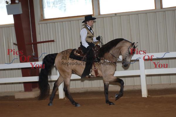 CLASS 018 Western Pleasure Limit Horse