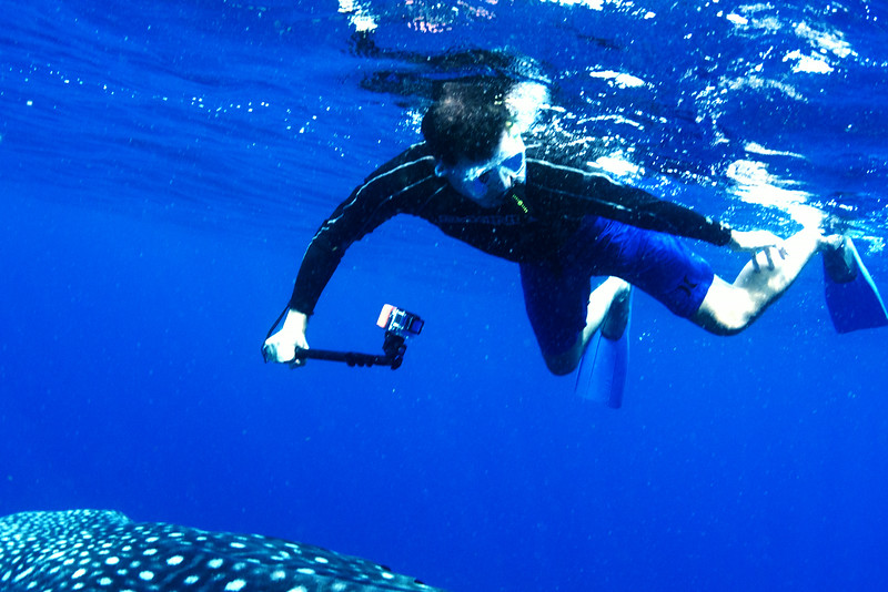 2014 Whale Shark - Cave Adventure-47.jpg