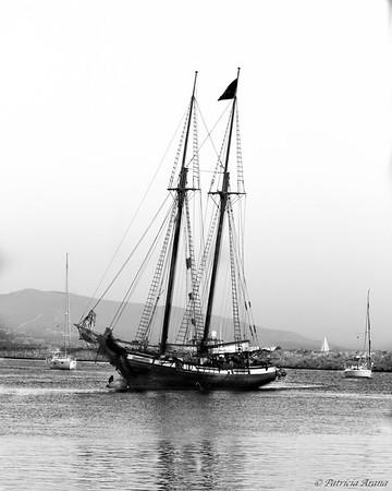 Tall Ships at Dana Point - 9/7/2019