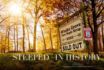 Steeped In History - Funks Grove