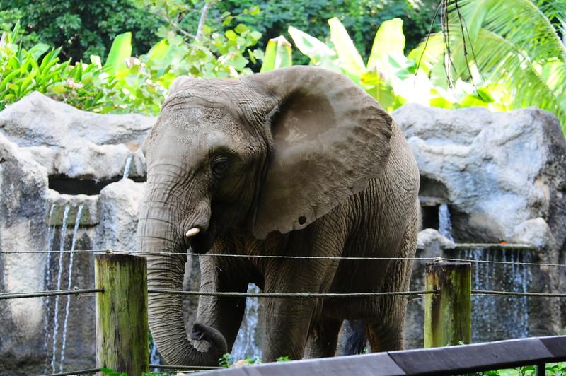 2016_PR_Zoo_Jan_ 0009.JPG