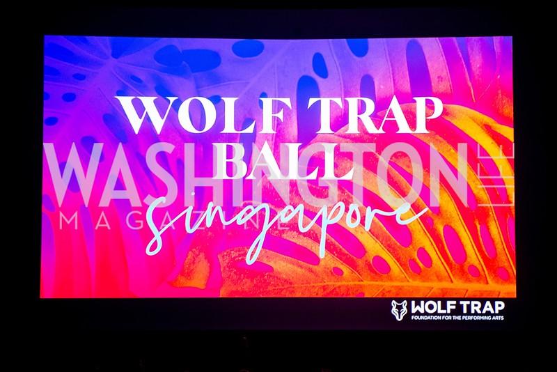 20190914-Wolf-Trap-Ball-VA-WL-VPm01.jpg