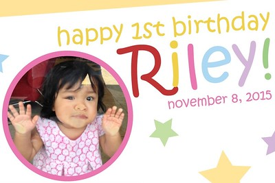 Riley's 1st Birthday 11/8/15