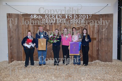 2017 KISD Auction
