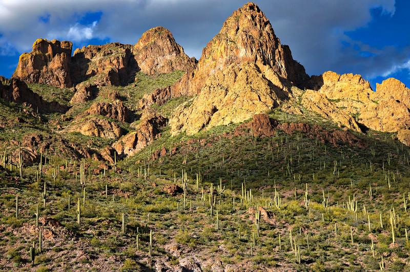 1434 Apache Trail