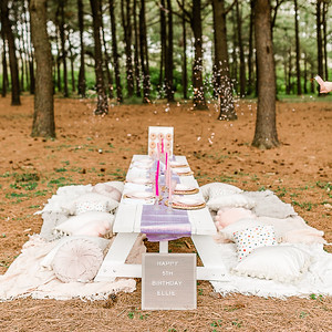 The Perfect Picnic | Luxury Picnic Planning