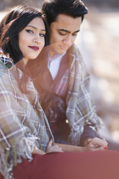 Le Cape Weddings - Gursh and Shelly - Chicago Engagement Photographer -47.jpg