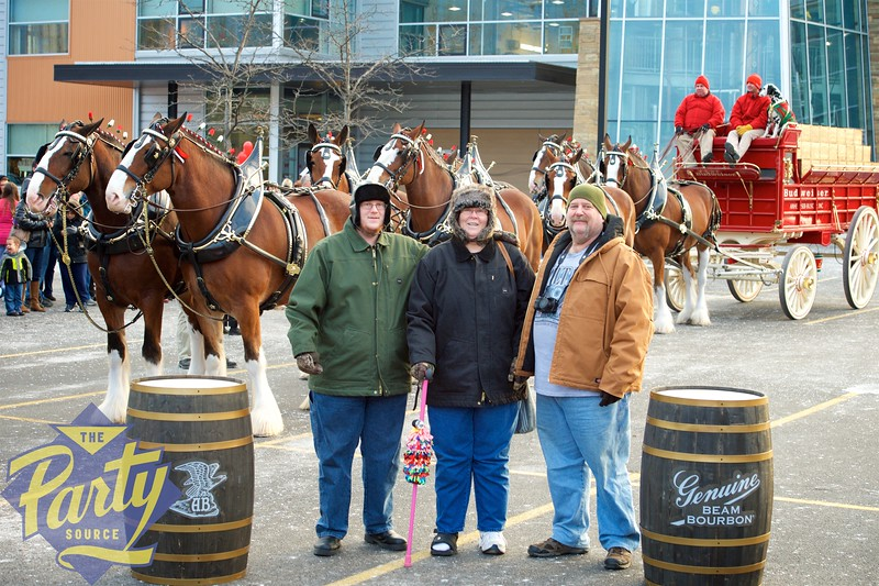 Clydesdale Portraits 140.jpg