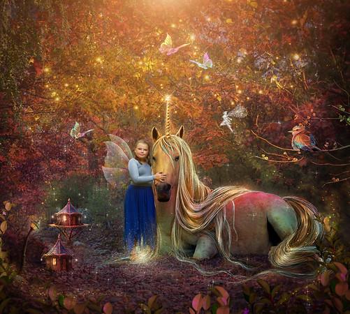 Jamisloan fairy 2020