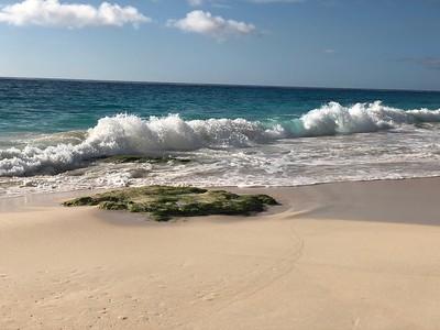 Bermuda 2019