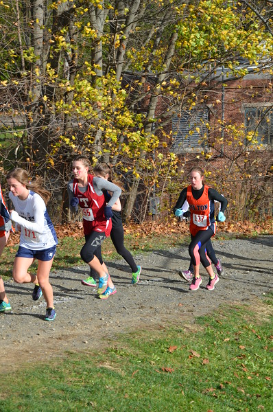 11/14/15: New England Cross Country Championship