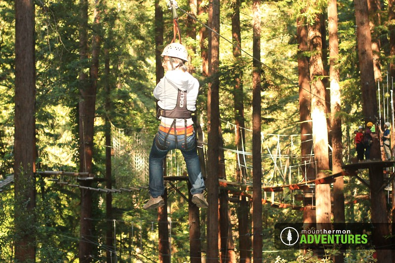 sequoiazip_1559086745628.jpg