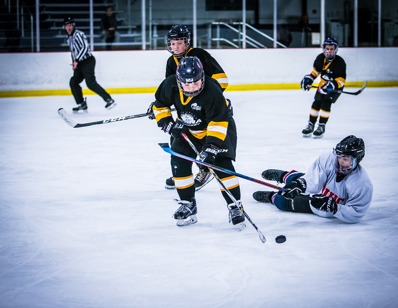 Bruins2-255.jpg