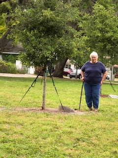 2018. Sutton Park Palmetto, Fl. Memorial tree for Nanna and Poppa
