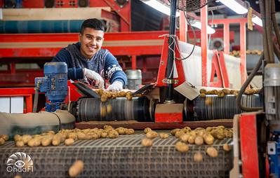 West Negev trip with Potato Focus