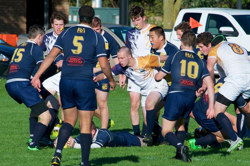 JCU Rugby vs U of M 2016-10-22  358.jpg