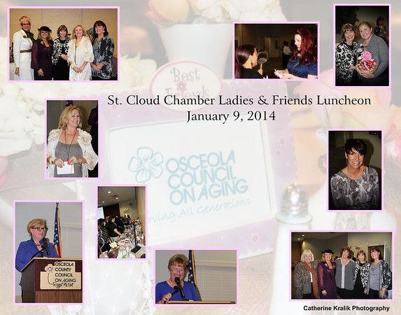 ST. CLOUD CHAMBER LADIES AND FRIENDS LUNCHEON JANUARY 9 2014