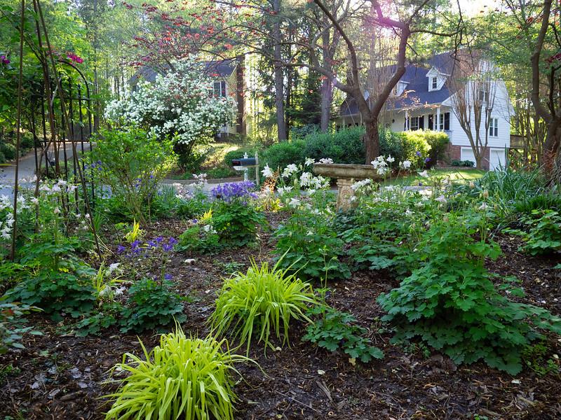 Garden_apr16-4170058.jpg